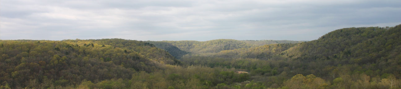 Shannon County Mountains
